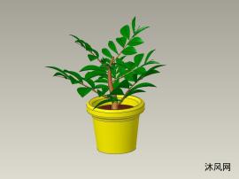 绿色植物盆栽设计